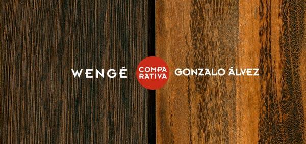 wengue-gonzalo-alvez